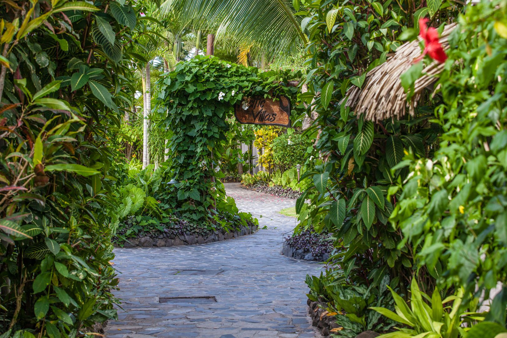 An image featuring a well designed pathway along the Pacific garden