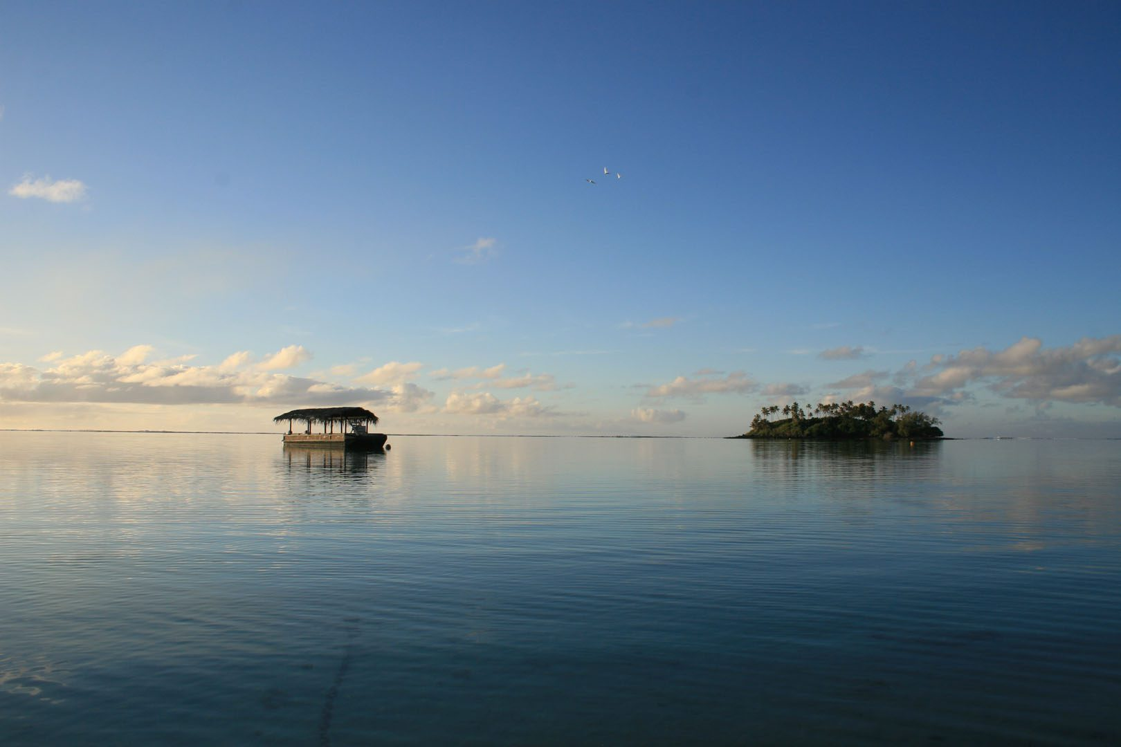 Moana Roa Lagoon Cruiser births in the Muri Lagoon featuring calm waters and a clear blue sky filled with three white lagoon birds