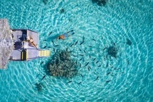 Man and woman snorkel in the blue clear waters of Muri Lagoon